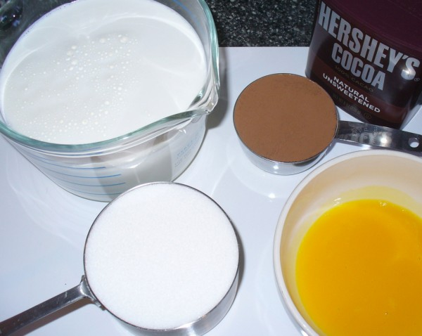 chocolate ice cream custard ingredients